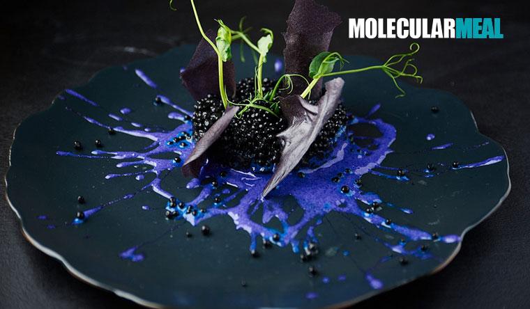 Онлайн-курсы по молекулярной кухне с получением диплома от компании Molecularmeal. Скидка 50%