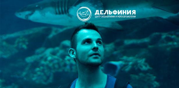 Посещение центра океанографии и морской биологии «Дельфиния»: билеты на выставку морских рыб и шоу морских животных для взрослых и детей! Скидка 50%