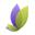 орхидея гагра официальный сайт